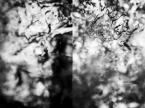 "Verie Astharoth ""1"" (2009-06-14 14:50:36) komentarzy: 0, ostatni:"