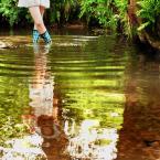 """małe a """"Meandry rzeki"""" (2009-06-18 13:43:48) komentarzy: 6, ostatni: :)"""