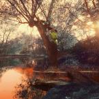 """K E I T """""""" (2009-06-19 00:15:09) komentarzy: 12, ostatni: �wietny klimat i drzewo z pochylona g�ow�."""