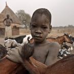 "Tramperek ""Moje kozy"" (2009-06-22 00:24:54) komentarzy: 23, ostatni: ..."