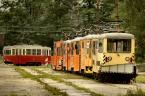 """PawełP """"Zajezdnia"""" (2009-06-23 14:17:38) komentarzy: 19, ostatni: Ależ piękne zdjęcie... a jakie okazy! Niestety, tramwajom w Gliwicach jedynie świeczkę można zapalić..."""