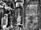 """nightbutterfly """"cmentarz żydowski"""" (2009-07-06 20:24:53) komentarzy: 11, ostatni: kocham kirkuty"""