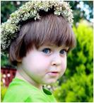 """EDIT_P-JANKO """"Zielono mi..."""" (2009-07-12 18:21:36) komentarzy: 6, ostatni: śliczna"""