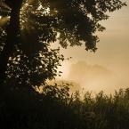 """daniel8 """"."""" (2009-07-14 22:10:34) komentarzy: 3, ostatni: ładne światełko"""