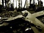 """Markus Scotophorus """""""" (2009-08-02 18:57:01) komentarzy: 10, ostatni: taa, upadek czy szczęśliwe lądowanie...?"""