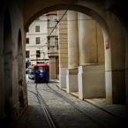 """ojosdebrujo """"lucky luk"""" (2009-08-09 20:18:30) komentarzy: 5, ostatni: :) ale sentyment do bambajów został:)"""