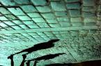 """witas """"quo vadis 5"""" (2009-08-19 16:31:14) komentarzy: 4, ostatni: o cieniach chodzacych do góry nogami?"""