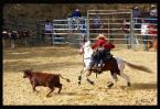"""Tomy_M """"Zawody Jeździeckie Rodeo Show - Wieściszowice 2009"""" (2009-08-30 21:31:47) komentarzy: 1, ostatni: fajnie uchwycona bardzo ciekawa scenka, jakby rodem z dzikiego zachodu, pozdrawiam:)"""