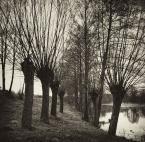 """Marta Posyłek """""""" (2009-09-02 09:00:09) komentarzy: 18, ostatni: Ja zbyt krajobrazowa nie jestem - ale to fajne jest.:)"""