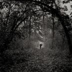 """Kaj_tom """"odeszła"""" (2009-09-08 14:26:48) komentarzy: 17, ostatni: Wracam...jesiennie"""