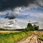 "Steven M. ""Polskie krajobrazy"" (2009-09-09 20:58:31) komentarzy: 23, ostatni: fajny obrazek :)"