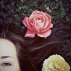 """justyna-sin """"where the wild roses grow"""" (2009-09-16 19:33:30) komentarzy: 12, ostatni: :) piękne"""