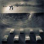 """Kimi """"W zębach reboka"""" (2009-09-16 20:09:24) komentarzy: 76, ostatni: bdb ! ociekające wodą :)"""
