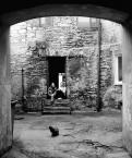 """asiasido """"niedziela na Garncarskiej"""" (2009-10-03 12:40:40) komentarzy: 14, ostatni: Kot musi być :)"""
