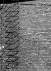"""Lew lagodny jak baranek """"schody do nieba"""" (2009-10-13 22:30:35) komentarzy: 18, ostatni: racja :) autostrada pieklo-niebo :)"""