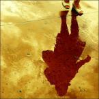 """Anavera """"niepewność"""" (2009-10-14 22:51:12) komentarzy: 13, ostatni: pieknie, cudne.nie moge sie napatrzec !! cudo !!!!!! ;] do ulubionych fot..TTs, w myslach daje 10"""