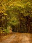 """koszmar69 """"Elbląskie pejzaże # 2"""" (2009-10-17 23:25:09) komentarzy: 12, ostatni: to jest jesień!"""