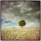 """klimat """""""" (2009-10-20 10:15:18) komentarzy: 40, ostatni: :) podnoszę się"""