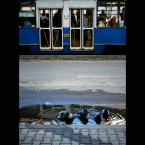 """JarekZ-68 """"... współistnienie ..."""" (2009-10-20 16:22:28) komentarzy: 21, ostatni: dobrze """"wyczekałeś"""" ,fajne zdjęcie,spójne,zrównoważone"""