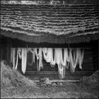 """MartaW """"wietrzenie netu"""" (2009-10-24 13:08:32) komentarzy: 15, ostatni: minimalnie mniej góry wg mnie. przyciąć kadr do początku dachu. motyw bardzo dobry. :)"""