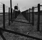 """asiasido """"Obóz Zagłady - Majdanek 2"""" (2009-10-30 12:01:55) komentarzy: 7, ostatni: Super Asiu, Cała Seria bardzo dobrze wykonana i ładnie zaprezentowana. A domyślam się, że temat niełatwy."""