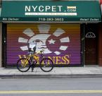 "patroszek ""Brooklyn"" (2009-11-01 21:30:18) komentarzy: 3, ostatni: db./"