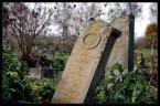 """sejlor """"Mennonickie wspominki"""" (2009-11-03 10:43:41) komentarzy: 29, ostatni: Asiula22-> :*"""