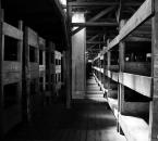 """asiasido """"Obóz Zagłady - Majdanek 7"""" (2009-11-03 11:28:24) komentarzy: 6, ostatni: żadne słowo nie opisze...  !!"""