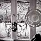 """kamron """""""" (2009-11-06 19:48:14) komentarzy: 5, ostatni: :) w pustyni i w puszczy, pożegnanie z afryką, pożegnanie z winnicami, wielkie, słoneczne winnice, wielki, słoneczny sad."""