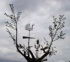 """baha7 """"Drzewko milenijne"""" (2009-11-08 18:51:05) komentarzy: 1, ostatni: :-)"""
