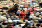"""sacio """""""" (2009-11-09 04:23:27) komentarzy: 21, ostatni: I to się nazywa akcja :)"""