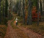 """KarmazyNowy """"spacer w jesień(3)"""" (2009-11-09 12:37:37) komentarzy: 12, ostatni: Piekne."""