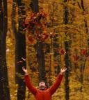 """myszok """"podrzuty jesieni..."""" (2009-11-09 21:13:15) komentarzy: 0, ostatni:"""