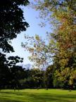 """Maciek Froński """"Pole Mokotowskie"""" (2009-11-18 09:09:40) komentarzy: 8, ostatni: O niczym czyli o słodkim nieróbstwie w piękne wrześniowe popołudnie:-)"""