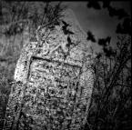"""ajsikel """"kirkut"""" (2009-11-26 18:57:23) komentarzy: 6, ostatni: odniesienia symboliczne"""