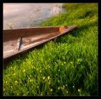 """L_S """"Zielony port"""" (2009-11-27 15:27:57) komentarzy: 16, ostatni: :)"""