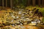 """zaklinaczkoni78 """"Jesień w górach"""" (2009-12-14 14:10:01) komentarzy: 1, ostatni: Ładna ta Kwisa :)"""