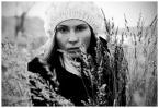"""Skylines """"Karolina"""" (2009-12-16 18:52:42) komentarzy: 10, ostatni: fajne, podoba się"""