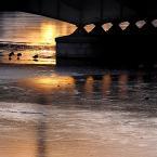 """sandiego """"pod mostem"""" (2009-12-30 22:31:11) komentarzy: 5, ostatni: ładnie"""