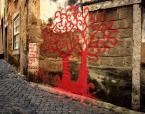 """weisfeldt """""""" w kamiennym świecie zakwitło drzewo """""""" (2010-01-05 22:41:13) komentarzy: 6, ostatni: wyłazi z muru :)))"""