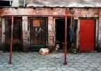 """asiasido """"urocze podwórko"""" (2010-01-06 23:08:27) komentarzy: 8, ostatni: ano faktycznie urocze :)"""