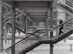 """kops """"gąszcz"""" (2010-01-12 14:41:25) komentarzy: 3, ostatni: ..fantastyczne zdjęcie -oddaje  zimowy klimat"""