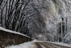 """asiasido """"zimowo-drogowo"""" (2010-02-03 10:17:28) komentarzy: 9, ostatni: Bardzo ciekawe."""