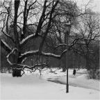 """kops """"zimowyj standard"""" (2010-02-05 15:50:15) komentarzy: 1, ostatni: standardy są czasami jedynym wyjściem"""