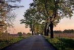 """darek893 """"mazury"""" (2010-02-10 18:47:59) komentarzy: 5, ostatni: ladne. jesien idzie"""