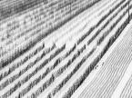 """rembrant """""""" (2010-02-14 20:11:20) komentarzy: 11, ostatni: :)"""