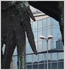 """kazan48 """"W skrzydle orła..."""" (2010-02-25 19:39:13) komentarzy: 7, ostatni: również prosiłbym o interpretację"""