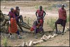 """Ryszard  Stasiewicz """"Obraz bezrobocia w Kenii"""" (2010-03-01 19:49:26) komentarzy: 4, ostatni: trochę mam wątpliwości czy """"OBRAZ Bezrobocia"""", na zdjęciu są Masajowie tzw Kenijscy pasterze, ktorzy żyją tylko z wypasania krów, nie są podporządkowani żadnemu urzędowi, żyją tak od stuleci... Myślę że by sie obrazili jakby  przeczytali..."""