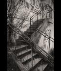 """redbeard """"Droga kibica"""" (2010-03-02 12:39:39) komentarzy: 2, ostatni: No cóż, zdaję sobie sprawę, że zdjęcie nie jest pierwsza klasa, chodziło mi raczej o zjawisko drogi prowadzącej do nikąd. Dwa kroki w tył i w kadrze jest dużo więcej krzaczorów, a ostrość dałem na koniec schodów, gdzie zamknięte są ścianą."""