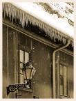 """Wojtek K. """"...może już dość tej zimy."""" (2010-03-09 18:46:11) komentarzy: 12, ostatni: Zimno..."""